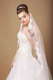 Bruid in Witte Kleding en Openwork Sluier Royalty-vrije Stock Afbeeldingen