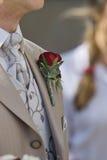 Bruidegom Royalty-vrije Stock Afbeeldingen