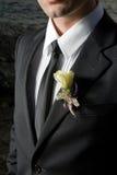 Bruidegom Royalty-vrije Stock Foto's