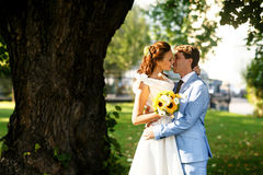 Bruidegom die in blauw kostuum een bruid in een witte kleding kussen onder boom Stock Afbeeldingen