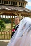 Bruidegom die Bruid bekijken Royalty-vrije Stock Fotografie