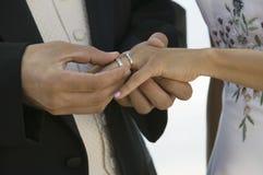 Bruidegom die ring plaatsen op bruidenvinger (close-up) stock afbeelding