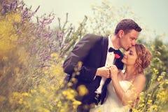Bruidegom en bruid op de gebieden stock afbeelding