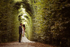 Bruidegom en bruid in Schonbrunn-Tuinen Royalty-vrije Stock Foto's