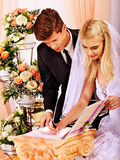 Bruidegom en bruidregisterhuwelijk Royalty-vrije Stock Afbeeldingen