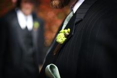 Bruidegom en zijn boutonniere Royalty-vrije Stock Foto's