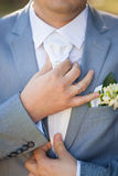 Bruidegom in huwelijksdag Royalty-vrije Stock Afbeelding