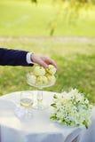 Bruidegom met appelen Stock Foto