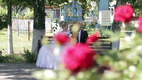 Bruidegom met bruid in een park in de zonneschijn stock footage