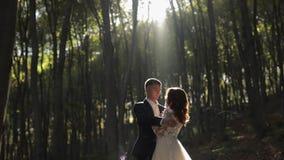 Bruidegom met bruid in het bospark Het Paar van het huwelijk Gelukkige Familie stock videobeelden