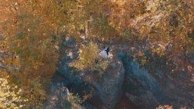 Bruidegom met bruidtribune in het bospark op een helling van de bergheuvel stock afbeelding