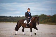 Bruidegom op een paard stock fotografie