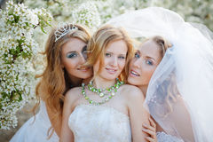 Bruiden Royalty-vrije Stock Foto