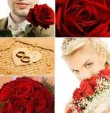 Bruids collage stock afbeeldingen