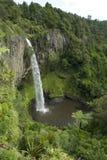 Bruids dalingen Nieuw Zeeland Stock Foto