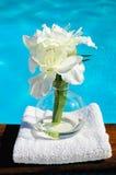 Bruids en handdoek royalty-vrije stock afbeelding