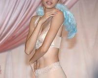 Bruids lingerie Royalty-vrije Stock Foto's