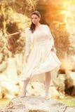 Bruids schoonheid Royalty-vrije Stock Foto's