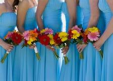 Bruidsmeisjes in blauw. Royalty-vrije Stock Fotografie