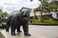 Bruin Bear. Los Angeles, CA: May 7, 2017: UCLA Bruin Bear on the University of California, Los Angeles, campus. For fiscal year 2016, UCLA has a budget of $6.7 Stock Image