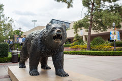 Bruin Bear. Los Angeles, CA: May 7, 2017: UCLA Bruin Bear on the University of California, Los Angeles, campus. For fiscal year 2016, UCLA has a budget of $6.7 Stock Photos