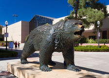 The Bruin Bear Statue at UCLA. LOS ANGELES, CA/USA - OCTOBER 4, 2014: The Bruin Bear Statue at UCLA on the campus of UCLA. UCLA is a public research university Stock Photography