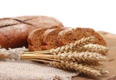 Bruin brood met oren Stock Foto