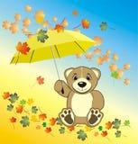 Bruin com guarda-chuva. Composição do outono Foto de Stock Royalty Free
