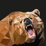 Bruin draag in de stijl van triangulering op een zwarte achtergrond Vector illustratie Royalty-vrije Stock Afbeelding