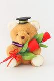 Bruin draag dragend een graduatie GLB en rode rozen royalty-vrije stock fotografie