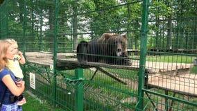 Bruin draag liggend in dierentuin en moeder met kind die het bekijken stock footage