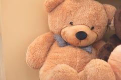 Bruin draag pop het situeren; vriendschapsstuk speelgoed Royalty-vrije Stock Afbeelding