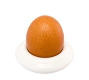 Bruin ei in eierdopje Stock Afbeeldingen