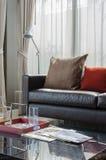 Bruin en rood hoofdkussen op moderne bank met lamp Royalty-vrije Stock Afbeeldingen