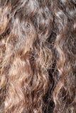 Bruin haar als achtergrond Stock Foto