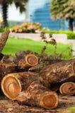 Bruin Logboek, Stuk van hout Stock Foto's