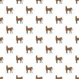 Bruin naadloos paardpatroon stock illustratie