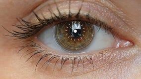 Bruin oogmeisje met futuristische softwareinterface stock footage
