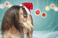 Bruin paard op groene achtergrond met Kerstmisballen Royalty-vrije Stock Foto's