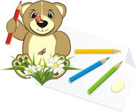 Bruin with pencils and chamomiles stock images
