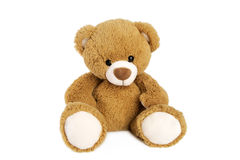 Bruin Teddy Bear royalty-vrije stock foto's