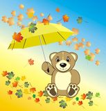 Bruin with umbrella. Autumn composition Royalty Free Stock Photo