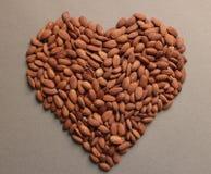 Bruin van amandelnoten hart als achtergrond stock fotografie