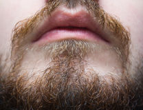 Bruinachtige baard en snor op een mensenclose-up Stock Afbeeldingen