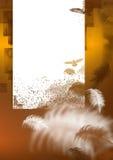 Bruine achtergrond met veer Stock Foto's