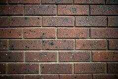 Bruine bakstenen muur Stock Afbeelding