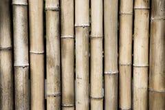 Bruine bamboemuur Stock Afbeeldingen