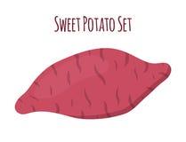 Bruine batat, bataat Organische gezonde groente Royalty-vrije Stock Afbeelding