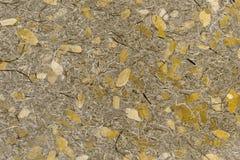 Bruine bladeren op geweven document achtergrond Stock Foto's