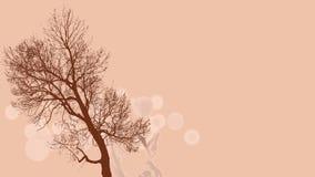 Bruine boom op roze achtergrond Stock Afbeelding